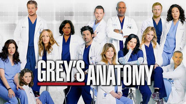 Greys Anatomy-Hospital